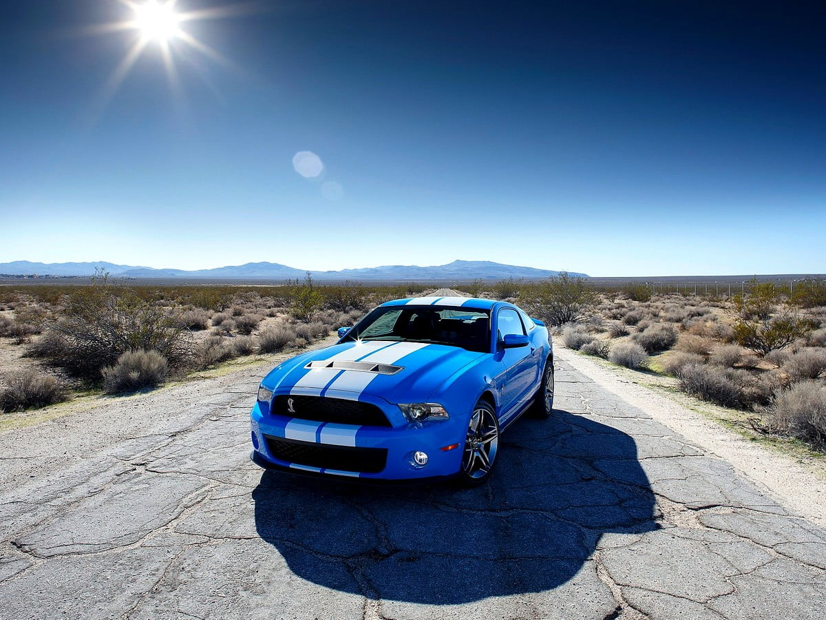Awesome Sport Car Cars Shelby Mustang Wallpaper Free Best Pics